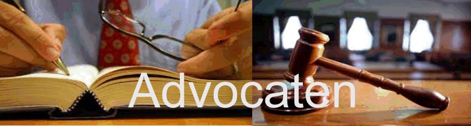 Gespecialiseerde advocatenen juridische adviseurs