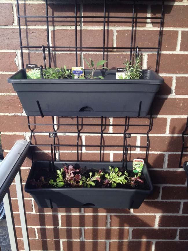 Stelling tegen muur balkon voor kruiden